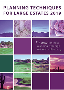 Latest Wealth Planning and Tax Strategies for Large Estates